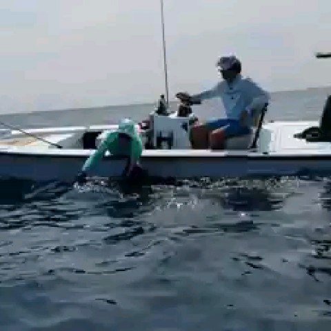 Sailfish release by Capt. Matt George  and  while fishing with  and  I came to