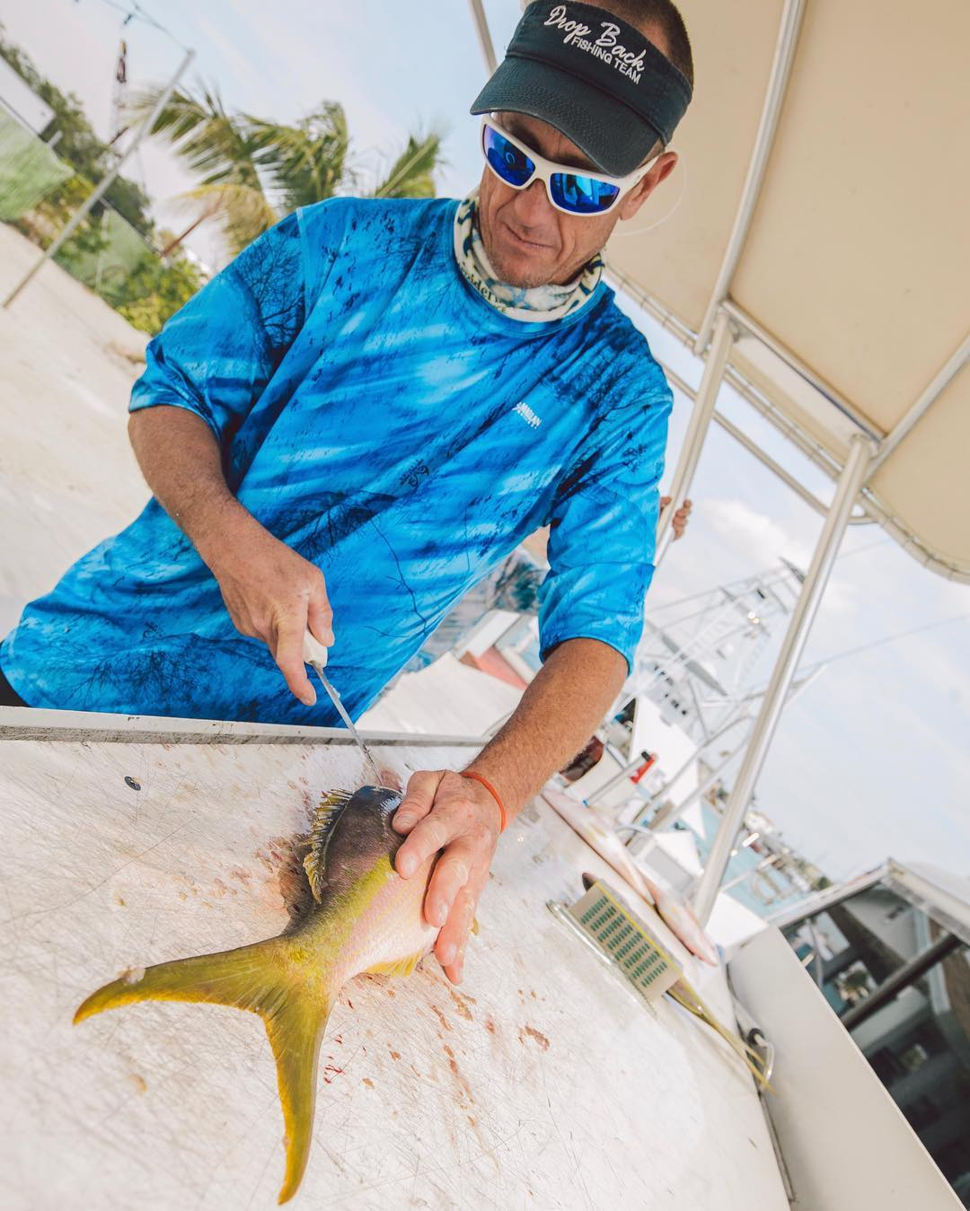 Fresh Florida Keys yellowtail are among one of the best eating fish in the ocean