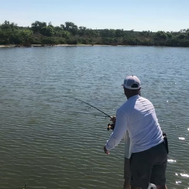Gotta love how good the lagoon has been lately