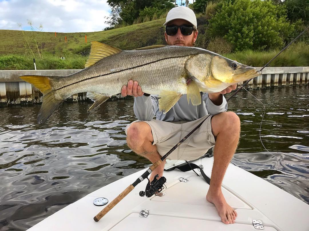Snook caught with IRT300 series reel.