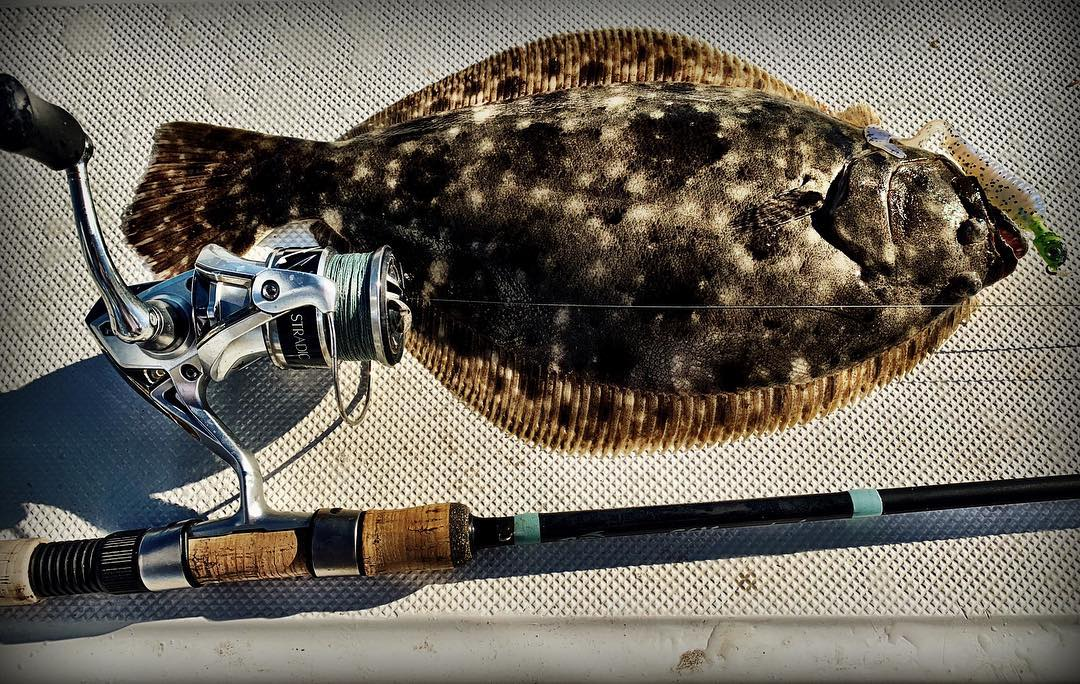 """Nice little flatty on yet again the 5"""" blue pearl lunker grub from"""