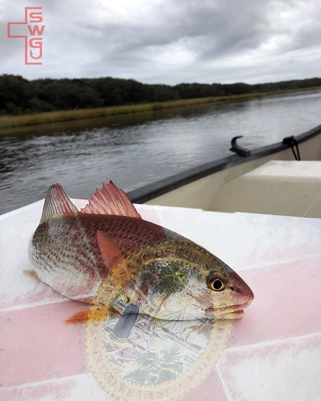 RTIC Coolers new redfish edition    