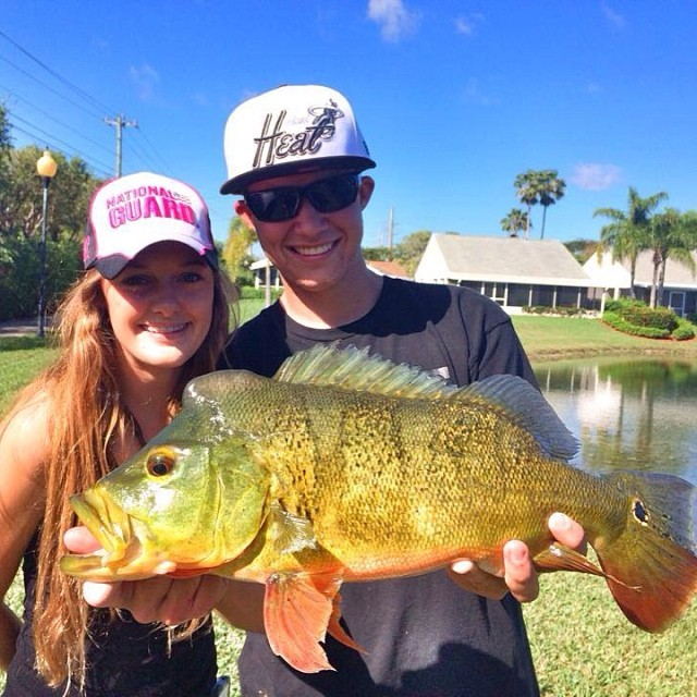 Homestead,FL is on fire! Jesse Alexander nailed this chunky Peacock Bass