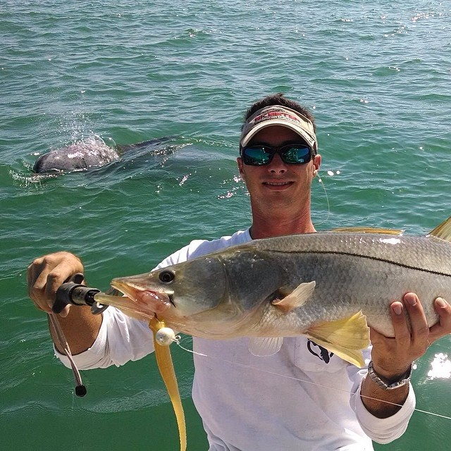 Snook Envy! Cliff was Photobombed by a Porpoise