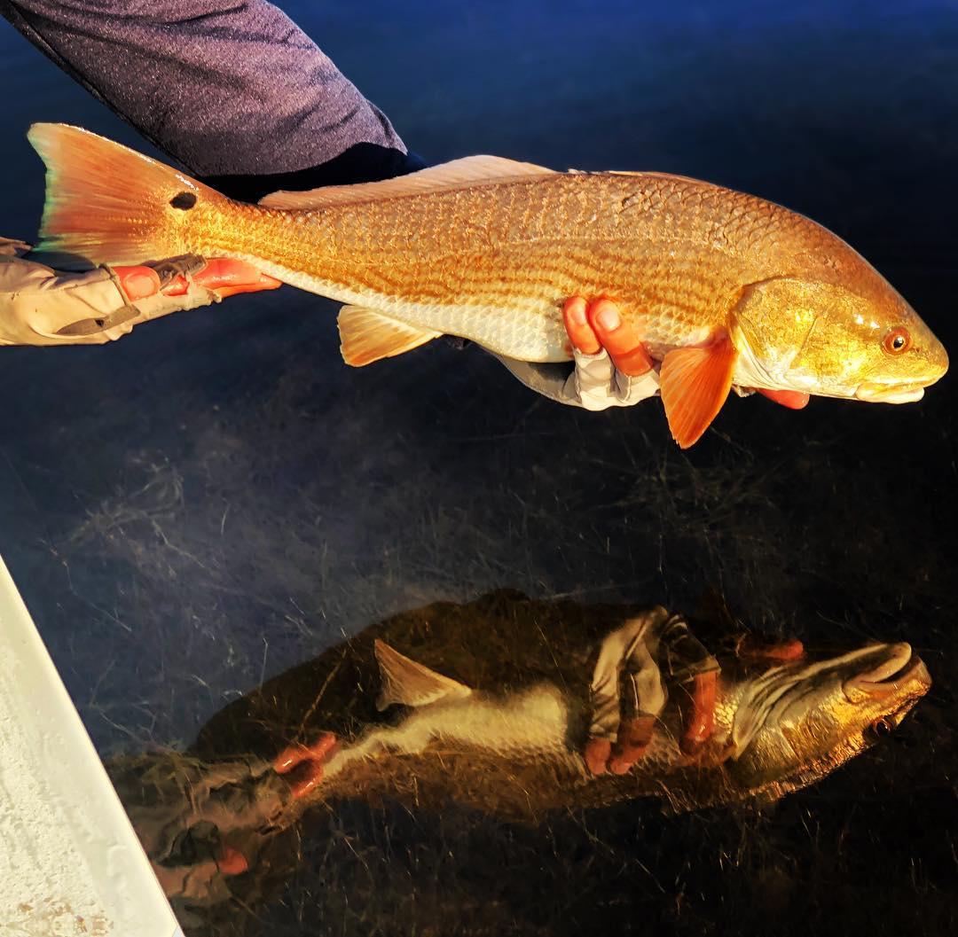 Wake-N-Redfish