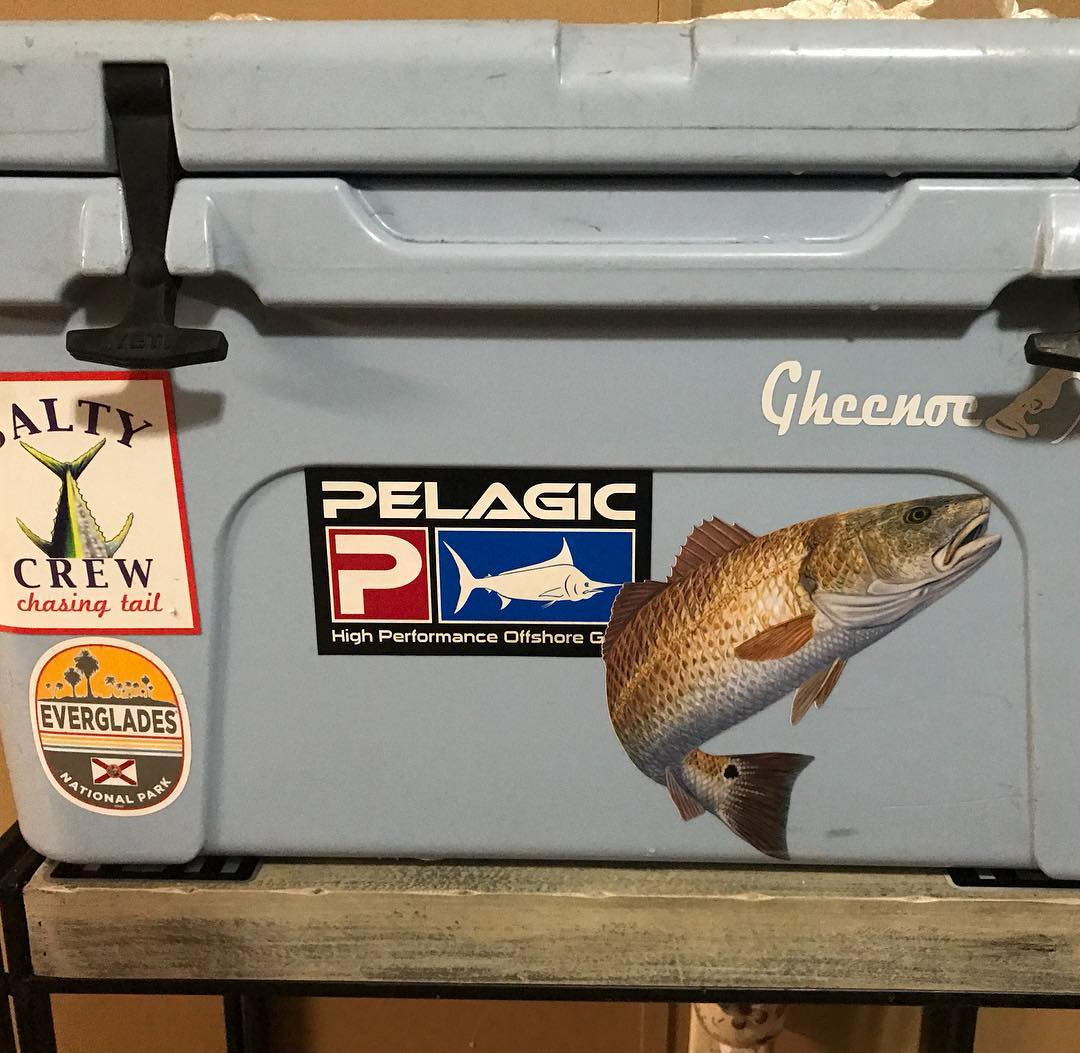 Got a new  redfish decal at Matlacha yesterday