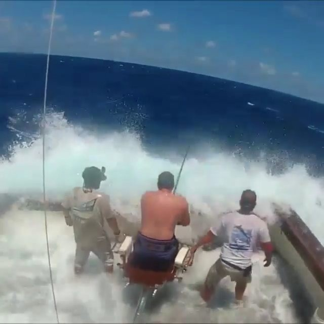 Tag a buddy who could handle some Marlin action like this!  Video by