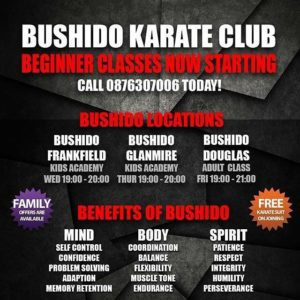 NEW BEGINNER CLASSES STARTING.  Call 0876307006 Today.  Places Limited