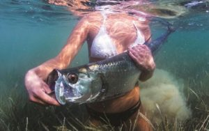 Tarpon Tuesday   Love the clear water and healthy sea grass.