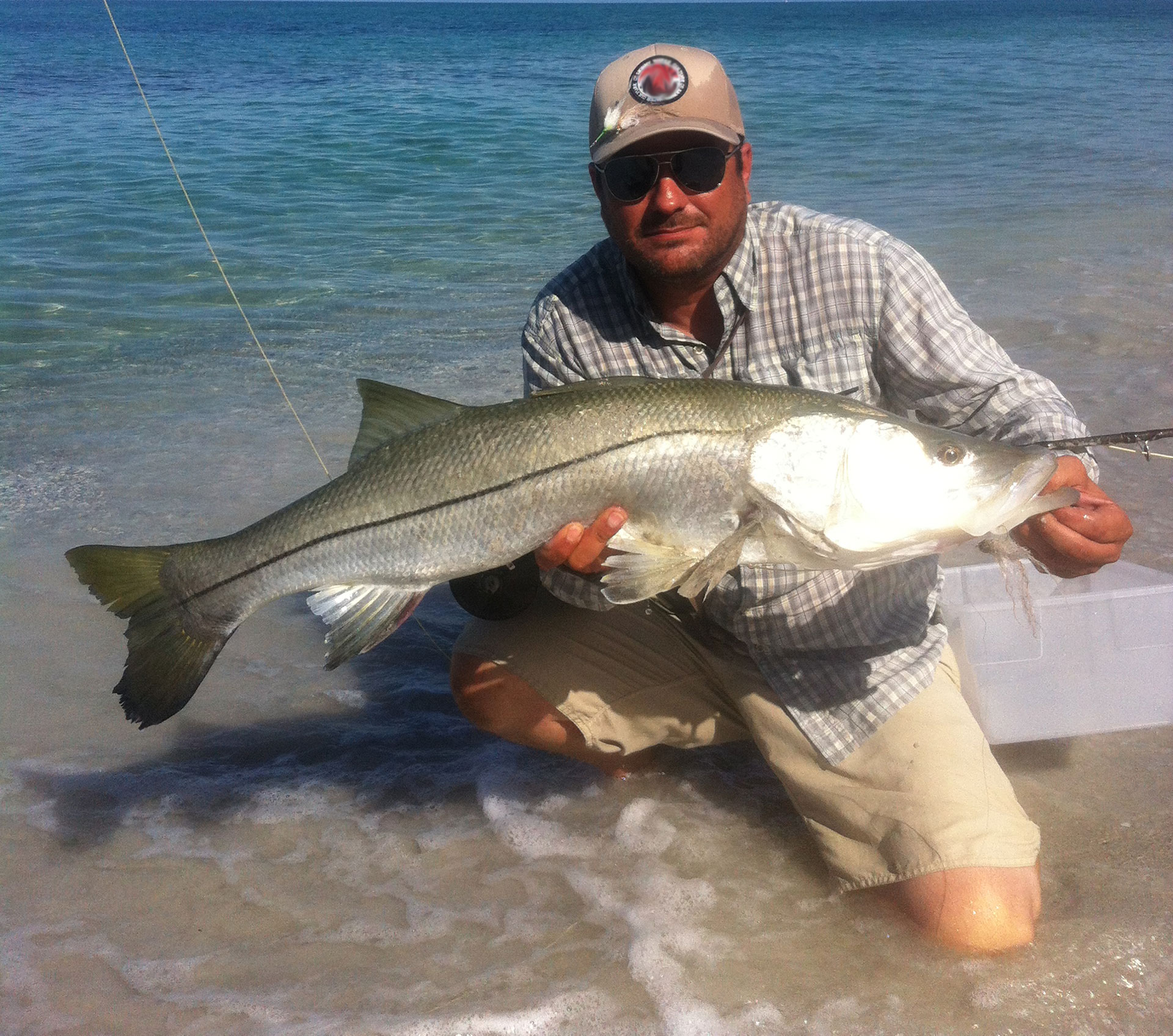 snook fishing in summer