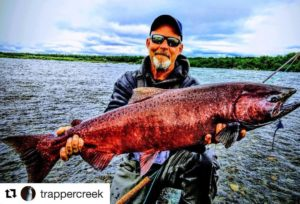 """Alaskan KING Salmon caught on one of our 13'6"""" 9wt builds!"""