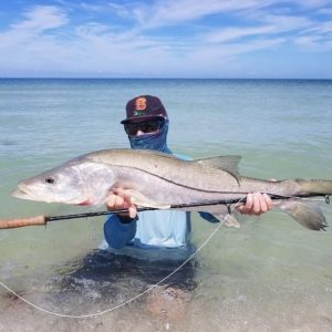 Awesome snook on the fly