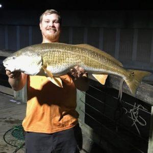 39″ Big Redfish!
