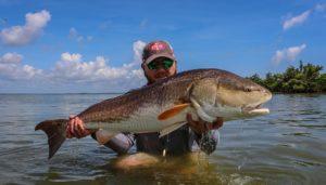 Redfish on 'Roids!