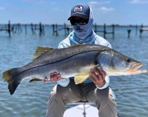 "@capt_noah_miller caught a nice 43"" snook on fly!  DM / tag us in your pics! Do…"