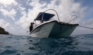 Livingston 15.5 on the hook in Guam. Worldwide baby  . . . .