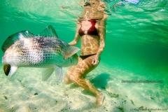 redfish-release-bikini.jpg